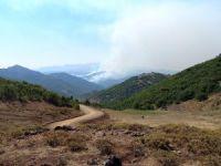 Belediye Başkanı Maçoğlu: Yangına müdahale etmemiz engelleniyor