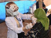 2 bin 950 rakımda aşı çalışması