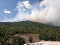Ovacık'ta çıkan yangına müdahale başladı