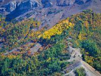 Salördek ormanları sonbahar renklerine büründü