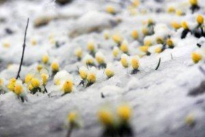 baharda-yagan-kar-hayati-olumsuz-etkiledi-(5).jpg
