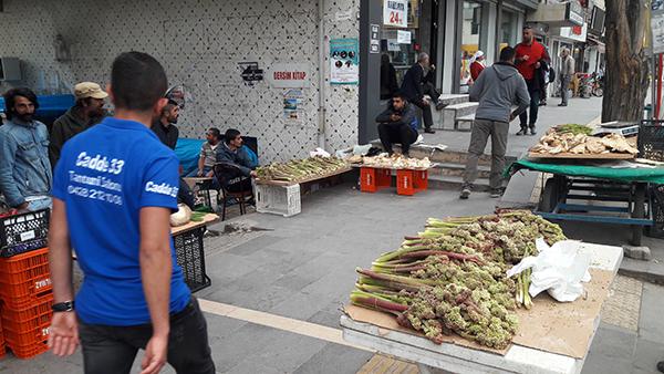 carcur-mantari-ekmek-kapisi-oldu-(2).jpg